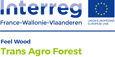 Trans Agro Forest